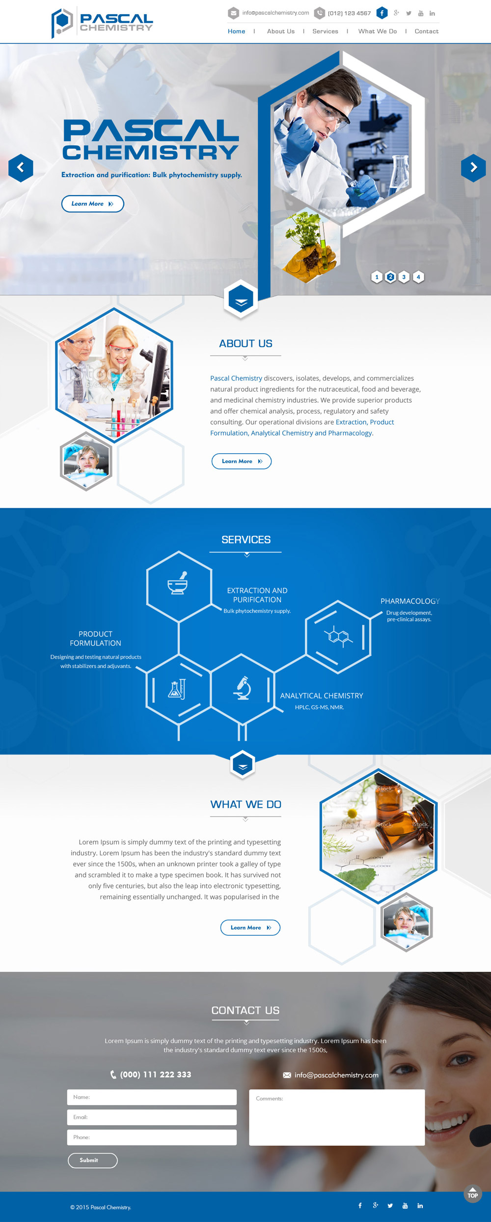 Pascal Chemistry web page logo design