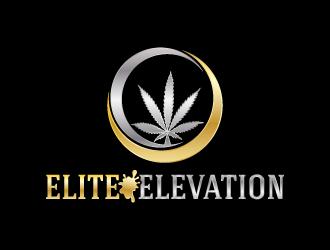Elite Elevation logo design