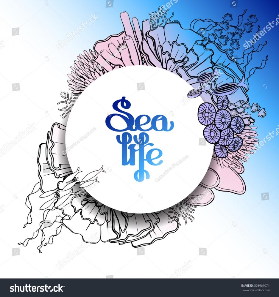 mindis coral reef logo design 48hourslogocom