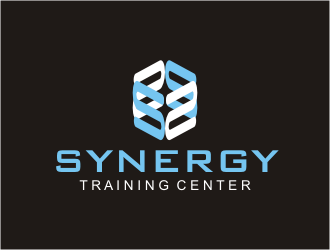 SYNERGY  TRAINING CENTER  winner