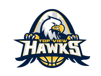 Top View Hawks logo design