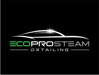 Eco Pro Steam Detailing logo design
