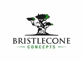 Bristlecone Concepts logo design