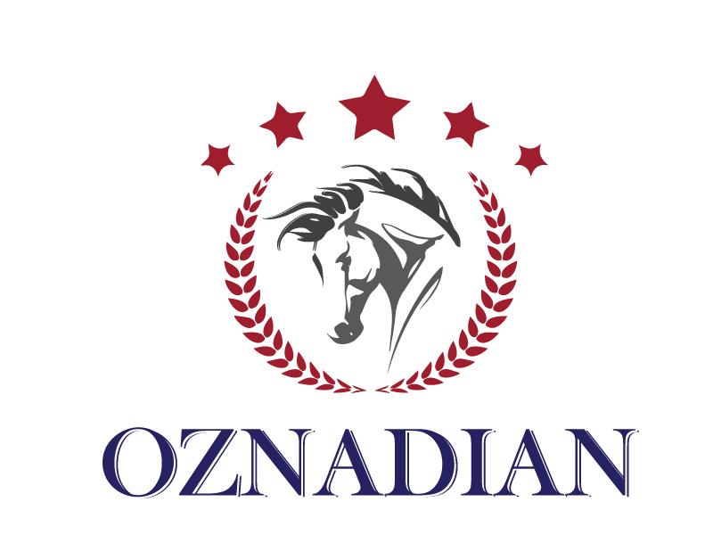 oznadian logo design by xien