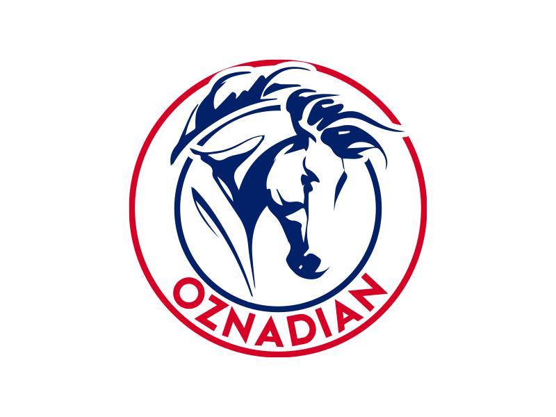 oznadian logo design by MarkindDesign™
