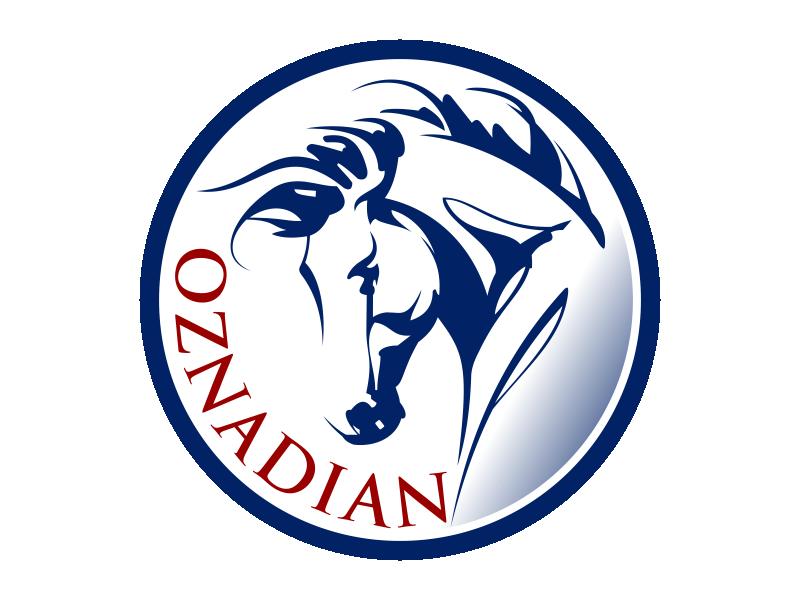 oznadian logo design by Kruger