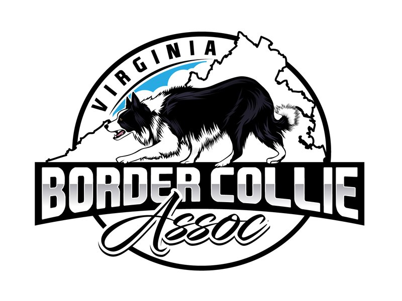 Virginia Border Collie Assoc.  or VBCA Logo Design